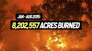 Wildfire Western Us by Climate Change Fueling Apocalyptic Wildfire Season In Western U S