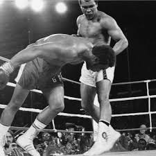 solar plexus punch boxing muhammad ali u0027s greatest fight george foreman and the rumble in