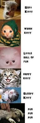 Sleepy Kitty Meme - allhqfashion http www allhqfashion com soft kitty warm kitty
