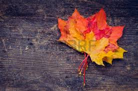 autumn background colorful fall maple leaves blue rustic