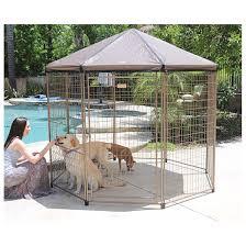Kennel Mats Outdoor by Best Outdoor Dog Kennel Reviews Best Top Care With Dogs