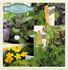 Sensory Garden Ideas Garden Teaching To Grow Their Own Food How Wee Learn