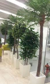 artificial plants manufacturer from ahmedabad