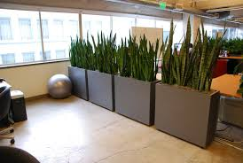 Office Plant Decoration Kl by Cool Office Partitions Perfect Awesome Office Workspace Decor