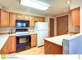Wooden Kitchen by Wooden Kitchen Interior With White Built In Fridge Stock Photo