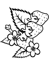 summer coloring pages primarygames com 3432 bestofcoloring com