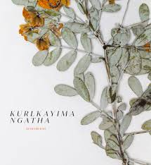 black bean aboriginal use of native plants kurlkayima ngatha remember me by form wa issuu