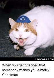 Merry Christmas Cat Meme - lolcatscom when you get offended that somebody wishes you a merry