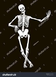 halloween design funny vector skeleton isolated over black stock vector 166500824