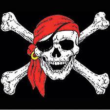 skull crossbones t shirt catdaddy