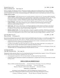 Example Of Business Analyst Resume by Example Of Business Analyst Resume