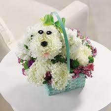 100 dog flower arrangements dog shaped flower arrangements