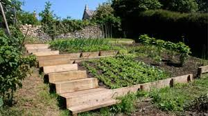 terraced vegetable garden design gardening pinterest garden