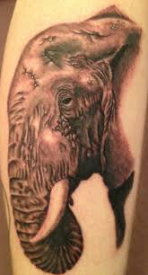 tattoo elephant skull realistic elephant tattoo design photos pictures and sketches