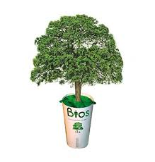 biodegradable urn biodegradable environmental ash caskets urns
