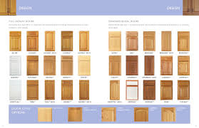 Kitchen Cabinet Door Colors  Best  Cabinet Door Styles - Kitchen cabinets brand names
