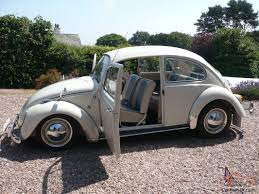 volkswagen bug white 1964 volkswagen beetle pearl white