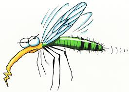 free printable insect coloring pages kids preschool clip