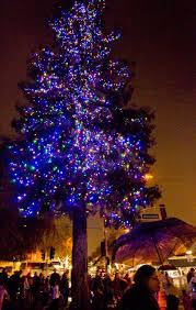 Fantasy Of Lights Los Gatos A Listing Of Holiday Activities In And Around The South Bay U2013 The