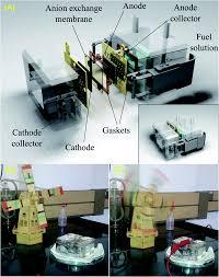 nanostructured platinum free electrocatalysts in alkaline direct