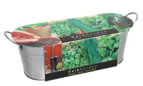 Window Sill Herb Garden by Gift Grow Kits
