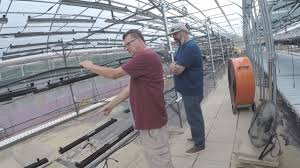 how cirrus led grow lights helped this commercial indoor farm