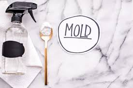 How To Prevent Black Mold In Bathroom Diy Mold Remover How To Get Rid Of Black Mold Naturally Without