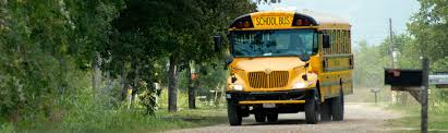 goldstar transit the premier provider of bus
