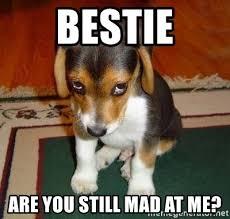 You Still Mad Meme - bestie are you still mad at me sad puppy meme generator
