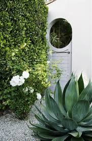700 best garden landscape design images on pinterest gardens naomi sanders garden gate and roses l gardenista love the simple gate design in an arched doorway love the large aloe