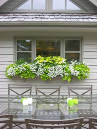 Hanging Planter Boxes by Top 25 Best Window Box Planter Ideas On Pinterest Outdoor