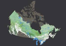Interactive Map Global Forest Watch by Mapping Canada U0027s Intact Forests Canadian Geographic