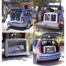 porta cani per auto trasportino auto doppio argo 21 per cani da caccia e simili