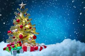 different types of christmas trees in your home