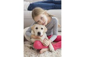Quelle Race De Chien Choisir Test by Quel Animal Pour Votre Enfant U2013 Choisir Un Animal Pour Votre