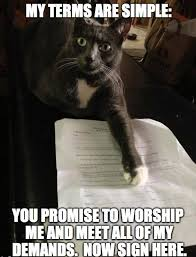 Lawyer Cat Meme - talk to my lawyer watch humor on the upper hand pinterest