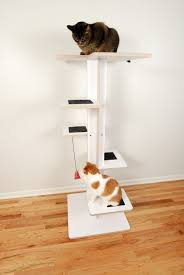 Cat Gyms Baobab Cat Tree By Square Cat Habitat