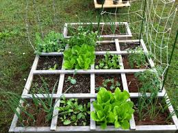category gardening