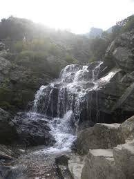 Rock Garden Darjeeling by Backpack Trip To Darjeeling Gangtok By Sonya V Anchan Tripoto