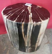 petrified wood stump table 10 best petrified wood tables images on