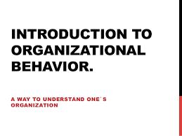 One Organization Organisational Behavior