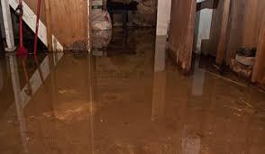 Wet Basement Waterproofing - interior waterproofing foundation professionals of florida