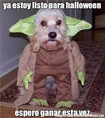 Memes De Halloween - ya estoy listo para halloween espero ganar esta vez meme de