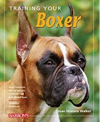 amazon com royal canin breed health nutrition boxer puppy dry dog