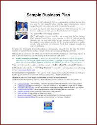 Loan Officer Business Plan Template How To Write Business Plan Pdf