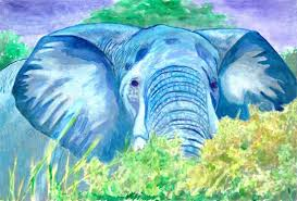 beautiful creatures grayscale coloring book elephant