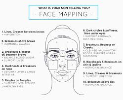 Chinese Face Mapping Blog U2014 Pure Skin Botanicals