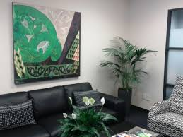 hire office plants living decor indoor plant hire specialist