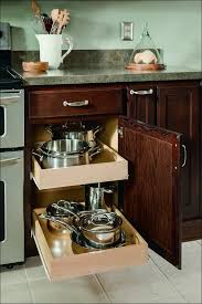 Kitchen Cabinets With Drawers That Roll Out by Kitchen Storage Cabinet With Doors Kitchen Cabinet Baskets