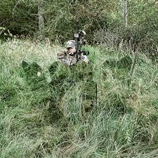 Deer Ground Blind Plans Amazon Com Ghostblind 4 Panel Predator Blind Hunting Blinds
